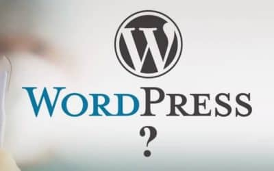 What About WordPress?